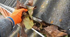 Gloved hand pulling leaves out of a roof gutter